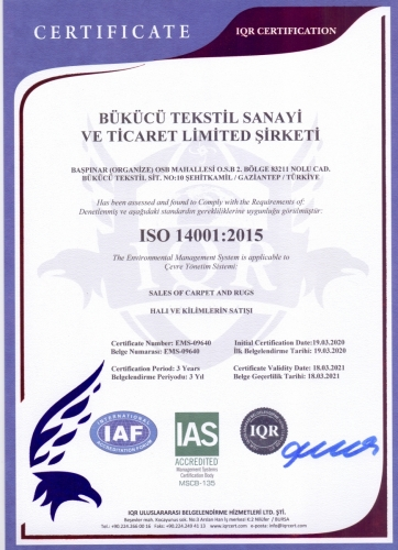 ISO 14001 - 2015 Eng