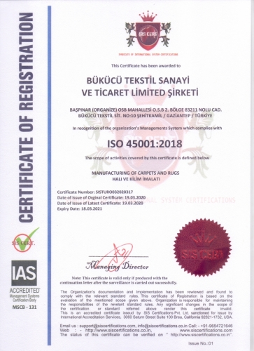 ISO 45001 - 2018 - 2